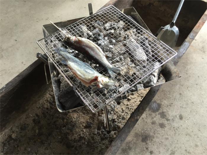 釣った魚をその場で焼きます